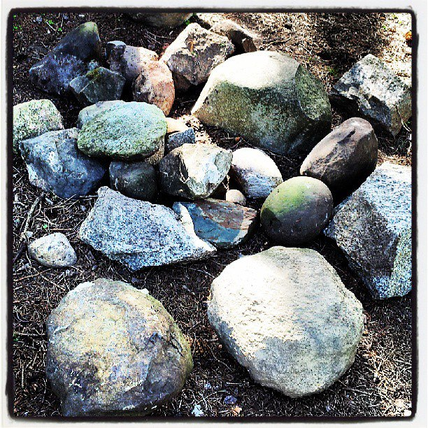 The rocks that have made it to our house.